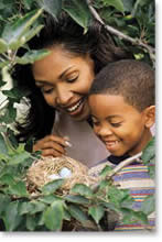 Image of woman and child investigating a bird nest